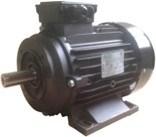 Ravel  H100 HP 6.1 4P B34 MA Kw4,4 4P - электродвигатель для помпы высокого давления