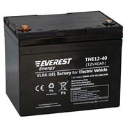 Everest TNE 12-40 - тяговый гелевый аккумулятор
