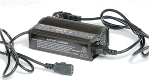 Everest Energy 24-8 - зарядное устройство