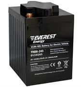 Everest TNE 6-245 (6 В, 200 А/ч) - гелевый тяговый аккумулятор